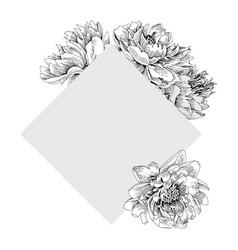 frame in form a square with peony flowers vector image