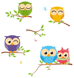 happy owl background with tree branch vector image