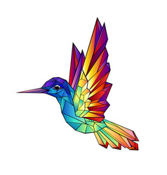 Rainbow hummingbird vector