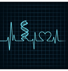 Heartbeat make DNA stand and heart symbol vector image vector image