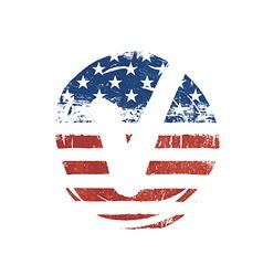 Voting mark American lag background Vote grunge vector image