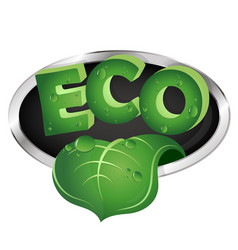 ecological symbol with green leaf vector image