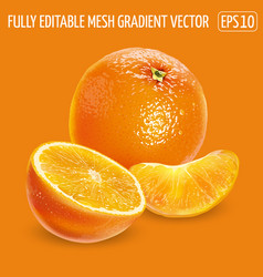 A whole orange with half and peeled slice vector