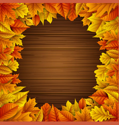 autumn leaves frame on wooden background vector image