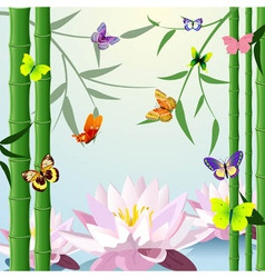 bamboo lotus butterflies background vector image