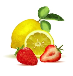 Fresh lemon with leaves and strawberry vector