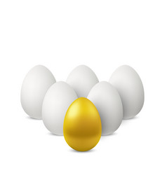 leadership of golden egg vector image