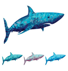 Polygonal shark in four vector