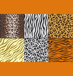 Seamless animal prints leopard tiger zebra skin vector