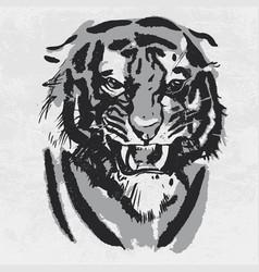 Watercolor drawing angry looking tiger animal vector