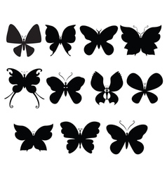 Butterfly silouettes vector image vector image
