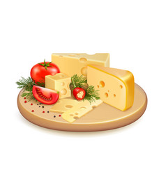 Cheese vegetables composition vector