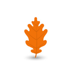 colorful autumn leaf icon set vector image