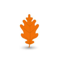 colorful autumn leaf icon set vector image