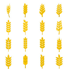 Ear corn icons set in flat style vector