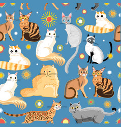 Graphic pattern different breeds cats vector