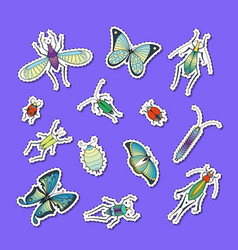 hand drawn insects stickers set vector image