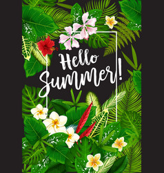 hello summer poster with tropical plants vector image