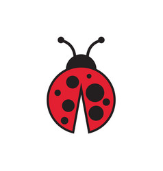 lady bug graphic design template isolated vector image