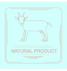 Logotype natural product vector