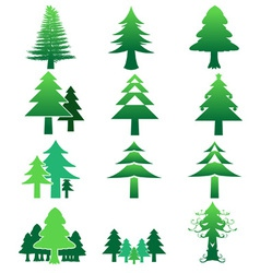 Pinetree color icon collection preview vector
