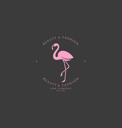 pink flamingo logo template vector image