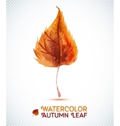 Watercolor autumn leaf of vector image