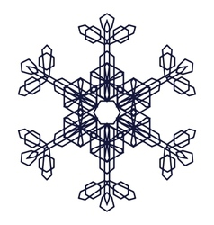Crystal Graphic Snowflake vector image vector image