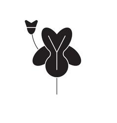 alstroemeria black concept icon vector image