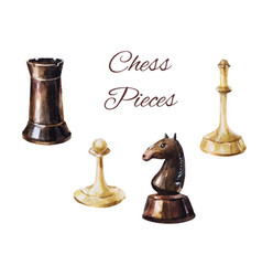 chess pieces on white background vintage game vector image