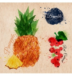 Fruit watercolor pineapple bramble red currant vector image