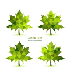 Green mosaic maple leaf vector