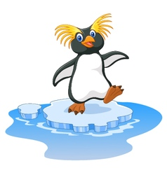 Happy cartoon penguin rockhopper on ice vector image