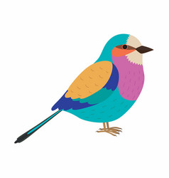 Lilac breasted roller colorful beautiful bird vector