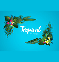 Nature tropical card vector