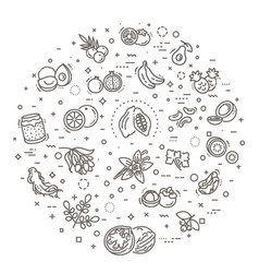 superfoods line icons vector image