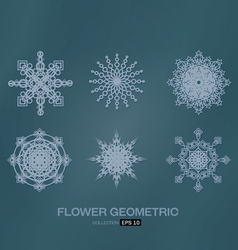 flower geometric vector image vector image