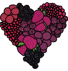Heart of berries vector image vector image