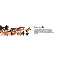 Banner template for conformation dog show with vector