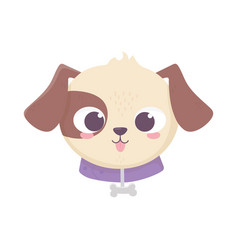 cute face dog collar with bone domestic cartoon vector image