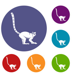 Lemur monkey icons set vector