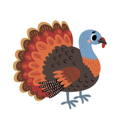 turkey farm bird vector image