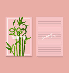 Asian lucky bamboo grass template on pink vector