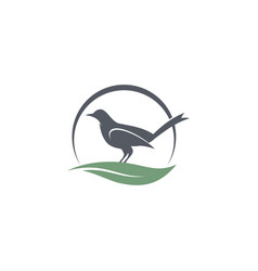 bird and leaf vector image