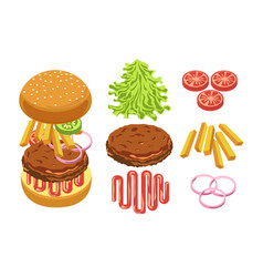 burger ingredients and separate layers shown vector image