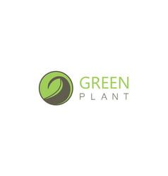 green plant logo vector image