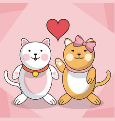 Loving couple cats animal baby heart decoration vector