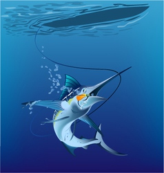 Marlin under the sea vector