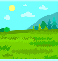 mountains pine and spruce forest nature landscape vector image