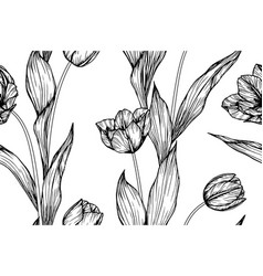 seamless pattern tulip flower and leaf hand drawn vector image